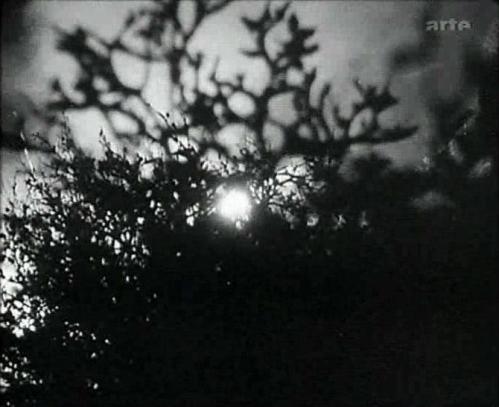 Die weiße Hölle vom Piz Palü (1929) 20821