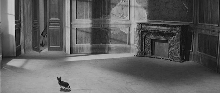 I Vampiri (1956) GATO