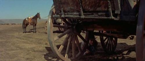 The Tall Men (1955) 294