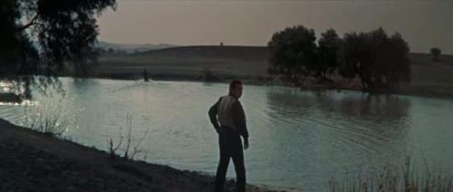 The Tall Men (1955) 382