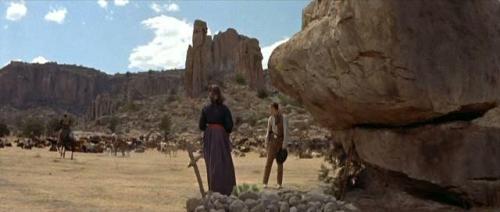 The Tall Men (1955) 413