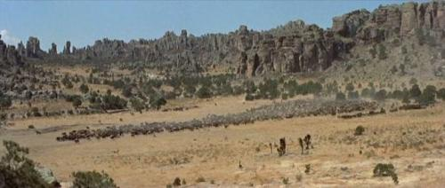 The Tall Men (1955) 448