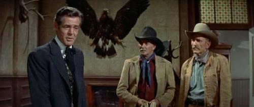 The Tall Men (1955) 489