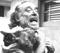 Bukowski e gato