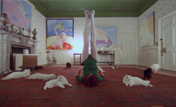 A Clockwork Orange - Cat Lady