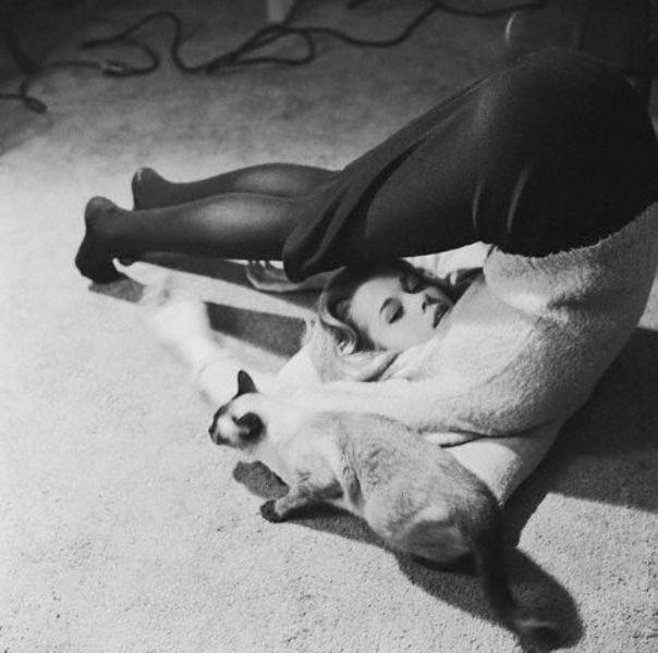 1962, Manhattan, USA - Jane Fonda lies on the floor cuddling a Siamese cat in a break from her studies at the Actors' Studio