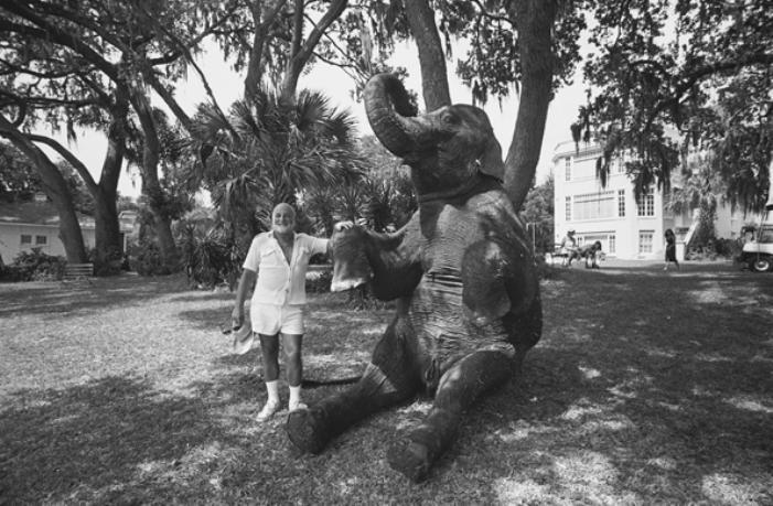 John Schlesinger e seu elefante de Uma Estrada Muito Doida (Honky Tonk Freeway, 1981) - Sarasota, Florida, 1980