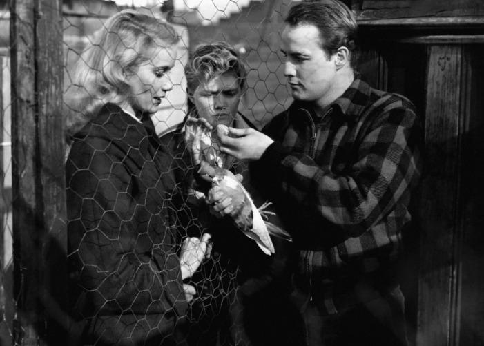 On the Waterfront (1954) Eva Marie Saint & Marlon Brando