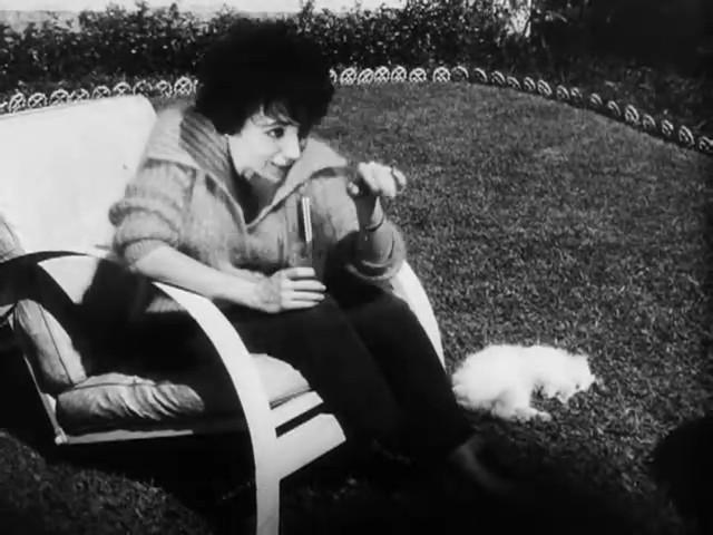 Couro de Gato (1961)
