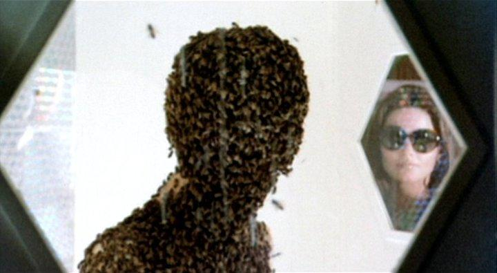 Invasion of the Bee Girls (1973) 4