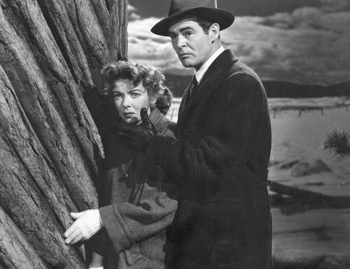 2- Cinzas que Queimam (On Dangerous Ground, Nicholas Ray/Ida Lupino, 1952)