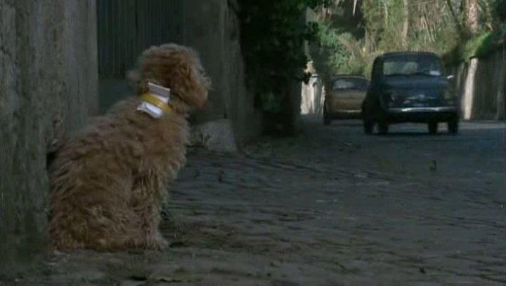 La Baby Sitter (1975)