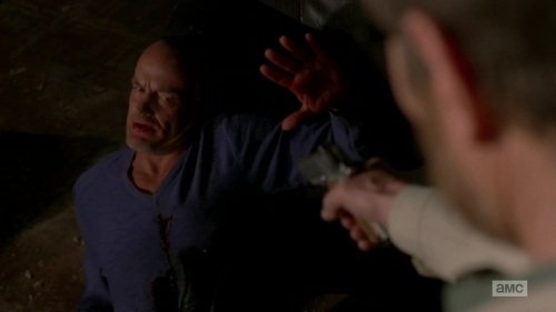 Breaking.Bad.S05E16 429