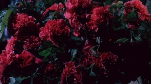 La.frusta.e.il.corpo.1963 (1)