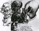 Freud by Dalí
